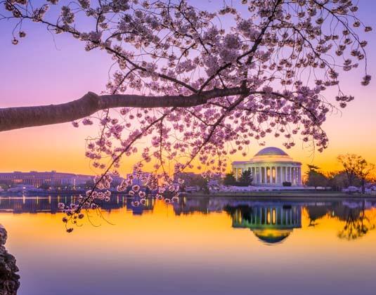 Washington, DC at the Jefferson Memorial