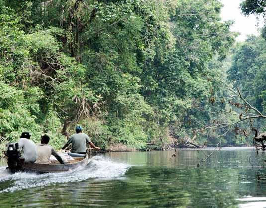 Taman Negara River journey