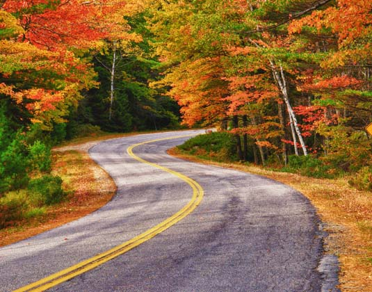 New England Fall road