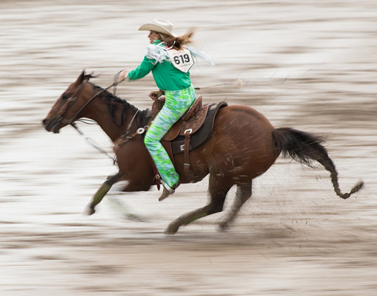 Calgary Stampede - Horse and Rider