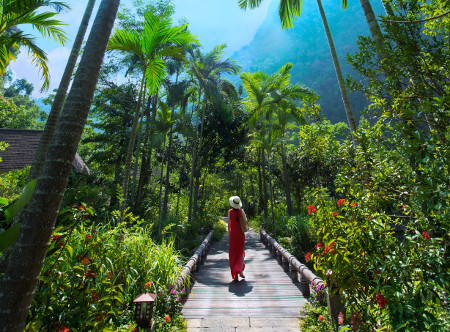 Banjaran Hot Springs - Greenery