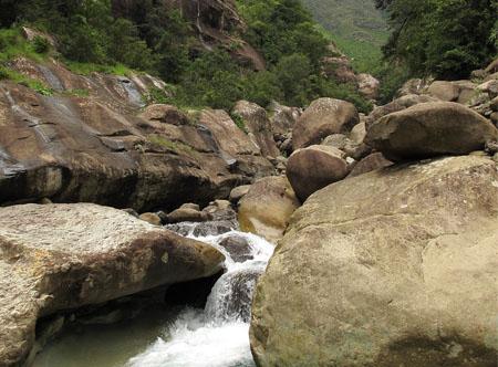 Drakensberg Rock