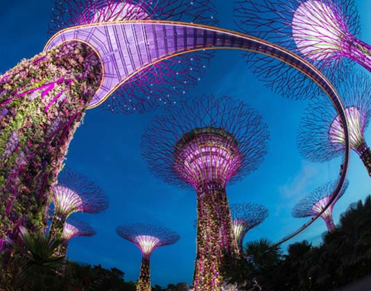 Singpore Gardens by the Bay