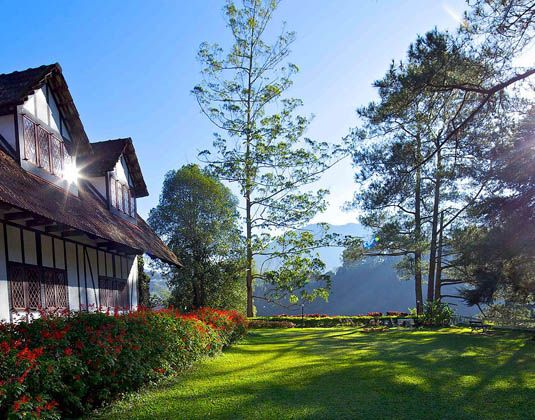 The Lakehouse, Cameron Highlands - View